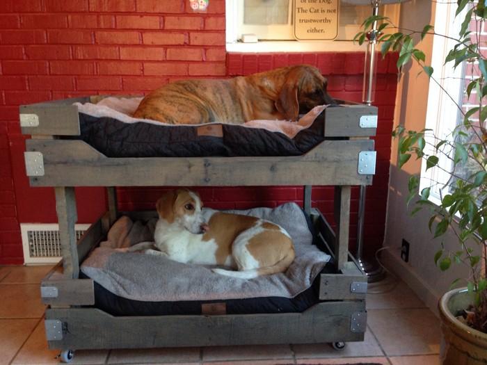 двухуровневая кровать для животных