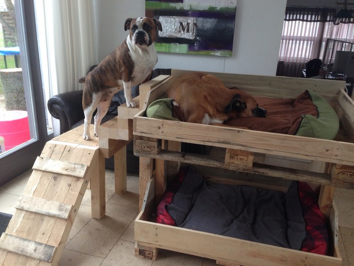 собачья кроватка