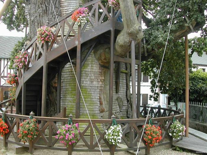 лестница дуб-часовня
