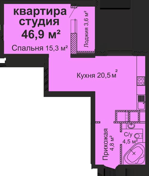 ЖК Скай Сити Однокомнатная 46,9 Планировка